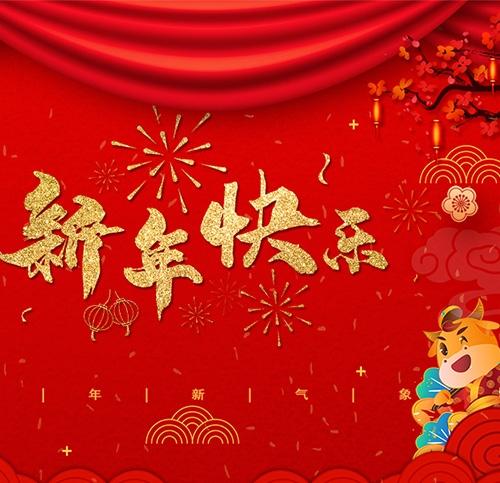 扬州市润熙照明科技有限公司祝大家新年快乐!
